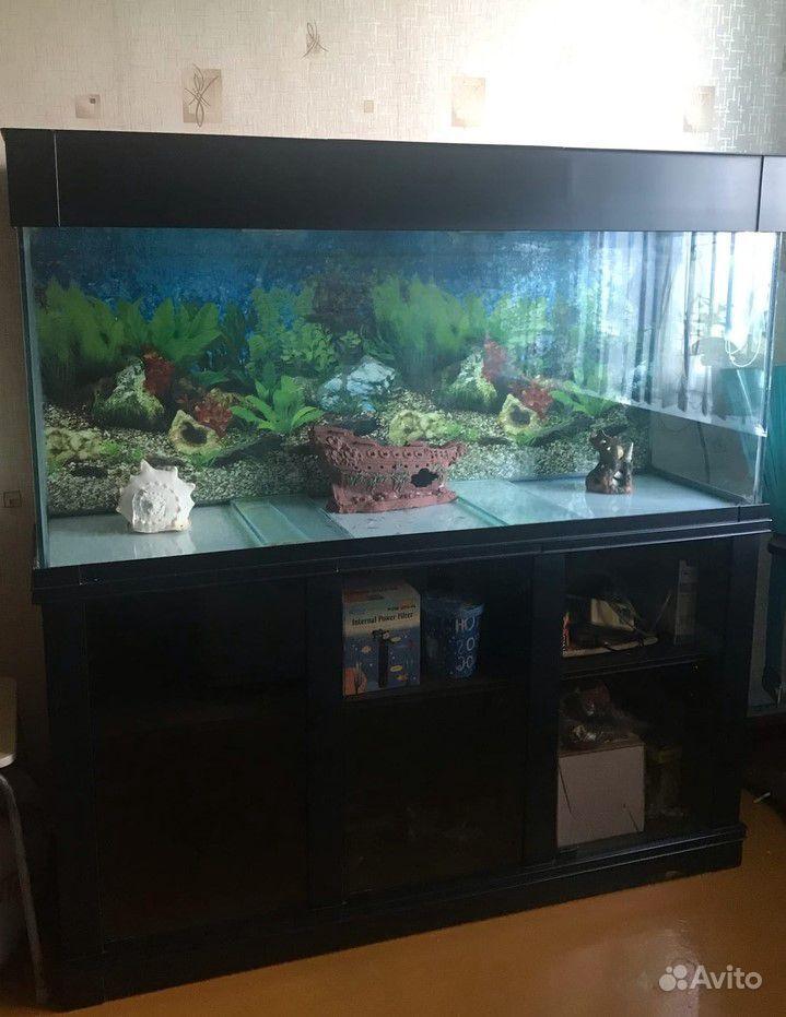 Большой аквариум купить на Зозу.ру - фотография № 2