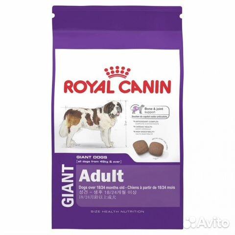 royal canin giant