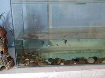 Продам аквариум 180 л
