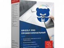 Антивирус Grizzly Pro Профессиональный 2пк 12 мес